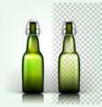 beer bottle empty glass for craft beer vector image vector image