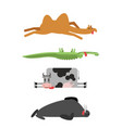 dead animals set 4 camel and crocodile cow and vector image