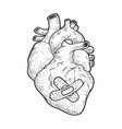 human heart patch sketch vector image