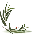 ladybird and eucalyptus vector image vector image