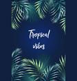 palm leaves jungle leaf paradise card template vector image