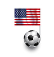 Soccer Balls or Footballs with flag of USA vector image vector image