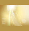 sun ray shining a the top of image over the golden vector image vector image