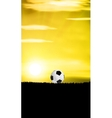 Football Grass Field vector image