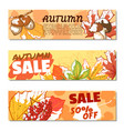autumn sale banner set vector image