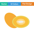 Flat design icon of Melon vector image vector image