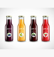 glass bottles with fruit juice collection vector image vector image