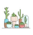 indoor cactus in pots flat vector image