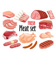 meat set fresh meat icons set vector image vector image