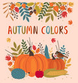 basic rgbcard design with autumn colorful elements vector image