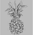 grey fruit-10 vector image
