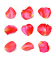 red rose petals set realistic vector image