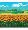 Scenic landscape with sunflowers vector image vector image
