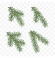 set realistic fir branches christmas tree vector image vector image