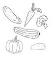 vegetables outline hand drawing vector image