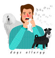 dogs allergy desease vector image vector image