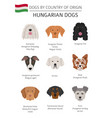 dogs by country of origin hungarian dog breeds vector image vector image