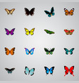 realistic pipevine bluewing spicebush and other vector image vector image