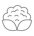 cauliflower thin line icon vegetable and diet vector image vector image