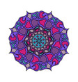 colorful mandala isolated on vector image