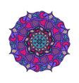 colorful mandala isolated on vector image