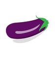 eggplant icon vector image
