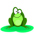 Funny Of A Happy Green Frog vector image vector image