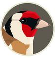 goldfinch bird round frame vector image vector image