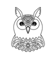 Ornamental White Owl vector image
