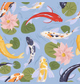seamless japanese pattern with asian koi fishes vector image