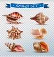 seashell transparent set vector image vector image