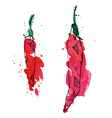 Watercolor of peppers vector image vector image