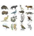 big set of australian and new zealand symbols
