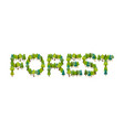 forest lettering letters from trees nature vector image vector image