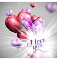 I love you retro label and balloon hearts vector image vector image