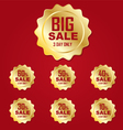 Icon gold big sale label or tag vector image vector image