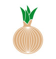 onion fresh vegetable icon vector image
