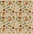 seamless pattern spices and herbs vector image vector image