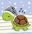 sleeping cute turtle in a hood vector image