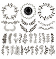 a set hand-drawn plants vector image vector image