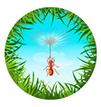 ant in the sky vector image vector image