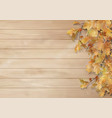autumn background with oak leaves vector image