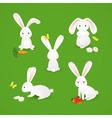 Cute bunnies vector | Price: 1 Credit (USD $1)