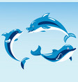 cute dolphins aquatic marine nature ocean blue vector image vector image