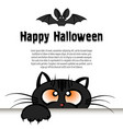 happy halloween cat is looking up at the bat vector image vector image