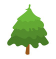 park fir tree icon isometric style vector image
