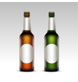 Set of Glass Frosty Bottles Light Beer with labels vector image