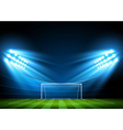 Soccer arena stadium vector image vector image