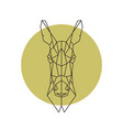 geometric head of donkey vector image