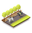 horse riding isometric composition vector image vector image